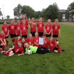 2015 05 Fußballcup (1)